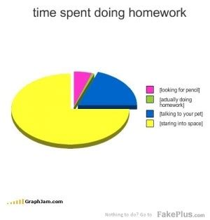 Average time spent on homework in chi